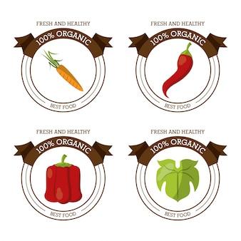 Logos colorés avec laitue carotte et poivrons