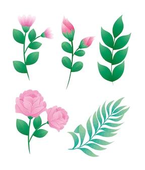 Lot de cinq belles roses fleurs et feuilles conception d'icônes décoratives