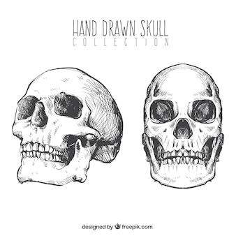 Lot de crânes dessinés à la main