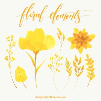 Lot de fleurs à l'aquarelle jaune