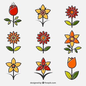 Lot de fleurs ornementales