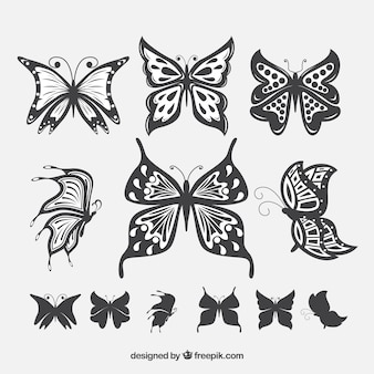 Lot de papillons avec de belles ailes