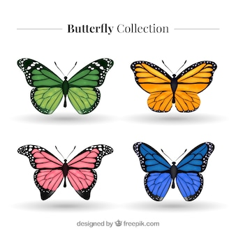 Lot de papillons colorés réalistes