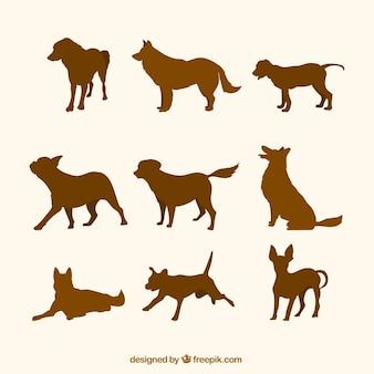 Lot de silhouettes brunes de chiens
