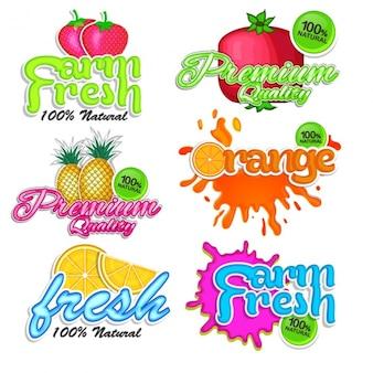 Lot de stickers colorés avec des fruits