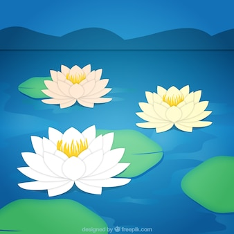 Lotus fleurs fond