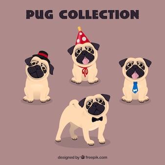 Lovely pugs avec des éléments drôles