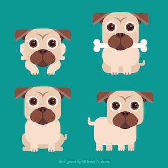 Lovely pugs avec un style mignon