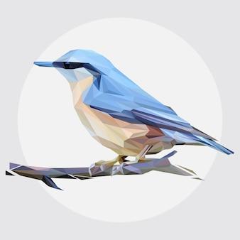 Lowpoly vecteur de spring bird