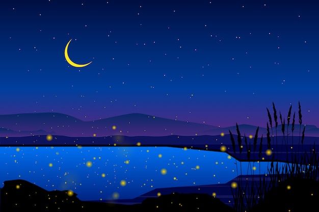 Luciole en mer avec nuit étoilée et paysage de ciel coloré