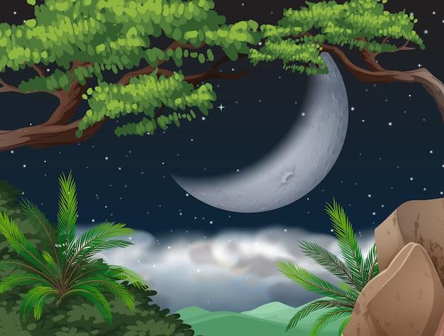 Lune présente sur jungle