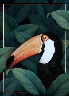 Macaw dans la jungle