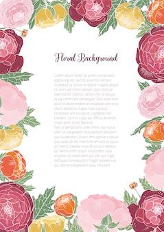 Magnifique fond floral avec renoncule en fleurs colorées et place pour le texte au centre. cadre composé de fleurs et de feuilles de jardin élégantes