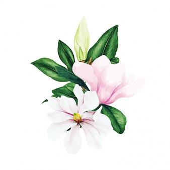 Magnolia et feuilles, bouquet aquarelle lumineux