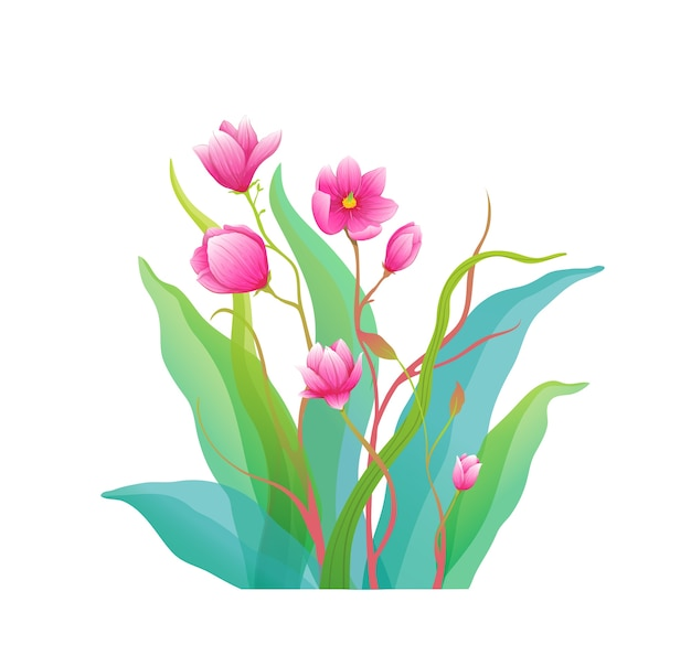 Magnolia fleurs fine art arrangement isolé clip art composition botanique classique.
