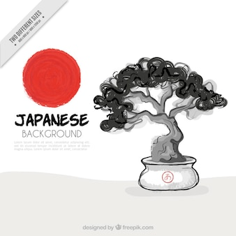 Main aquarelle dessinée bonsaï fond