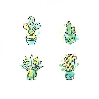 Main cactus collection dessinée avec l'aquarelle