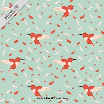 Main colibri dessiné avec des plumes de fond