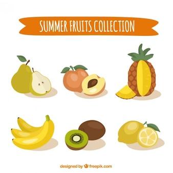 Main collection de fruits d'été dessinée