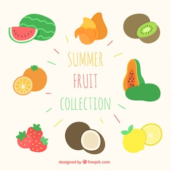 Main collection de fruits d'été dessinée