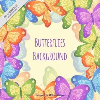 Main couleurs peintes papillons fond