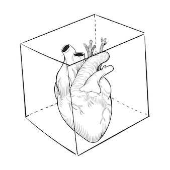 Main, dessin, illustration, de, captivé, coeur