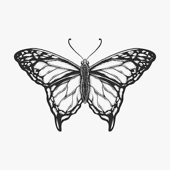 Main dessin illustration vectorielle monochrome papillon vintage