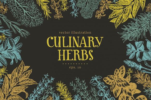 Main dessiné fond d'herbes et d'épices culinaires