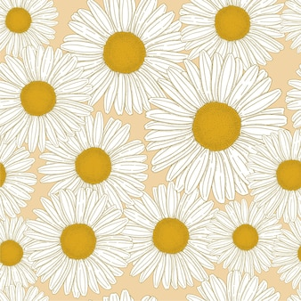 Main dessinée fleur daisy commune bellis perennis vector illustration modèle sans couture