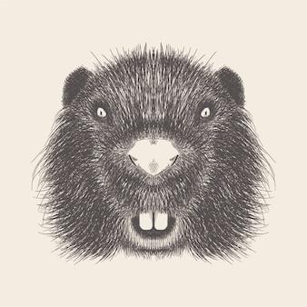Main dessinée vecteur de visage de souris illustration