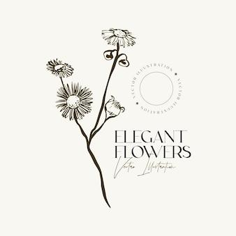 Main élégante dessiner des herbes ou des fleurs de croquis.