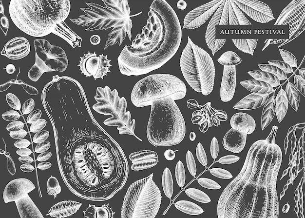 Main a esquissé l'automne sur tableau noir. modèle botanique élégant et vintage avec des feuilles d'automne, des citrouilles, des baies, des graines, des croquis d'oiseaux. parfait pour l'invitation, les cartes, les dépliants, le menu, l'emballage.