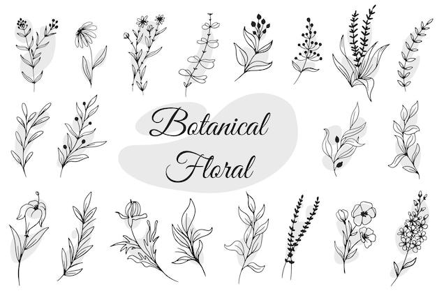 Main de floral botanique dessiné isolé