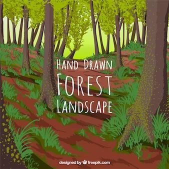 Main forêt dessinée fond