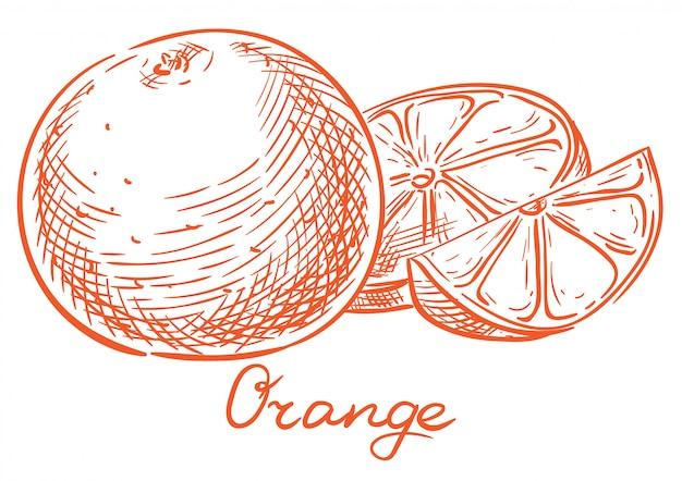 Main orange croquis dessin à la main