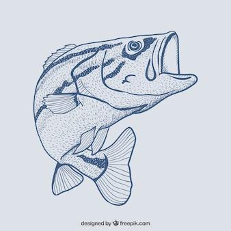 Main poissons dessinée