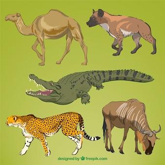 Main réaliste dessiné des animaux sauvages