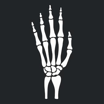 Main squelette avec icône d'os. illustration vectorielle.