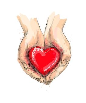 Mains féminines donnant un coeur rouge d'une éclaboussure d'aquarelle, croquis dessiné à la main. illustration de peintures