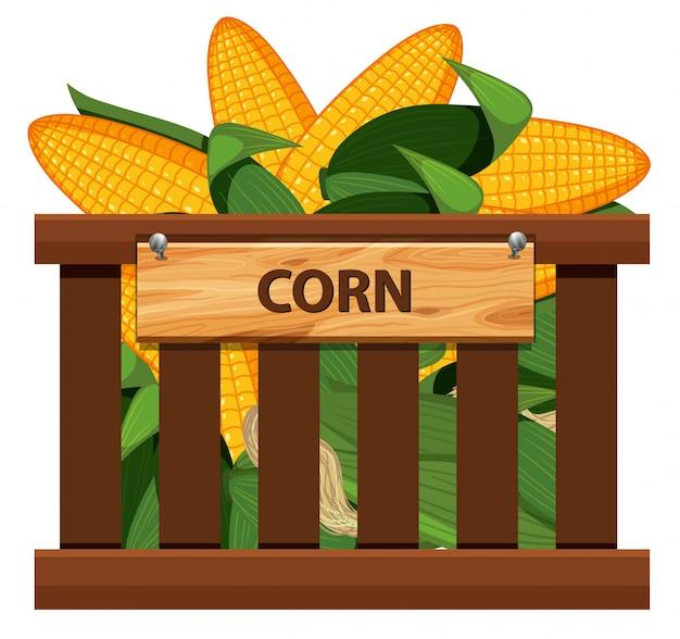 Maïs sucré dans une caisse en bois