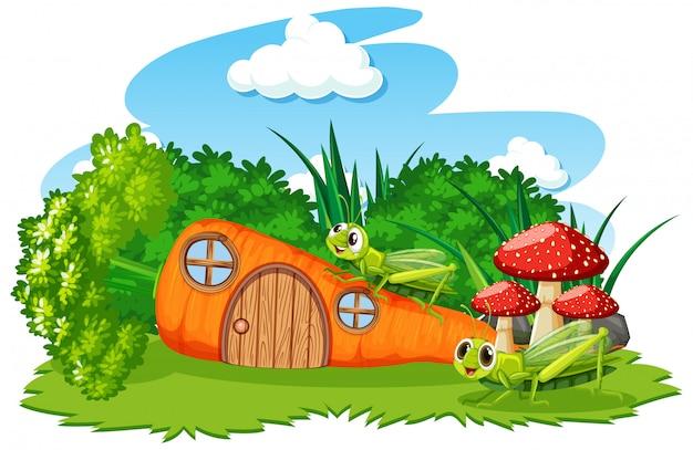 Maison de carotte avec deux sauterelles style cartoon sur fond blanc