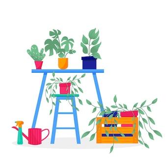 Maison & jardin. collection de fleurs colorées botaniques, pot de fleurs lumineux. ensemble de plante d'intérieur avec des feuilles, cactus succulent. éléments isolés sur fond blanc. illustration vectorielle plane