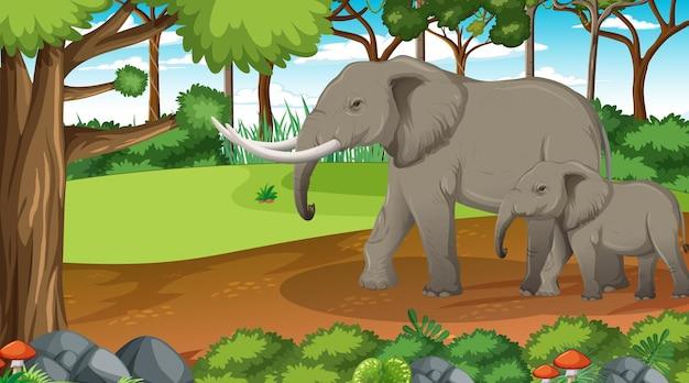 Maman et bébé éléphant dans une scène de forêt ou de forêt tropicale avec de nombreux arbres