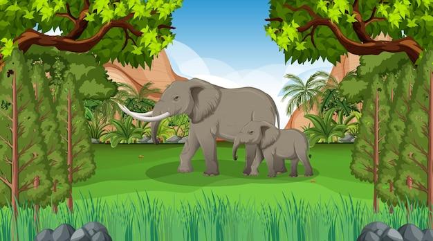 Maman et bébé d'éléphant dans la scène de forêt