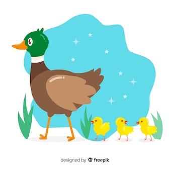 Maman canard menant ses canetons