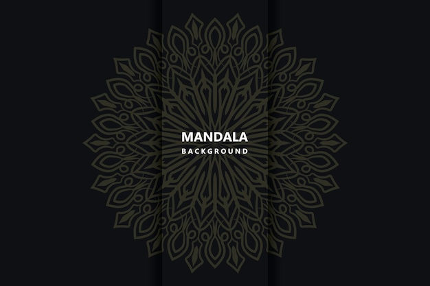 Mandala de fond de décoration vectoriel