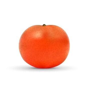 Mandarin réaliste isolé sur blanc