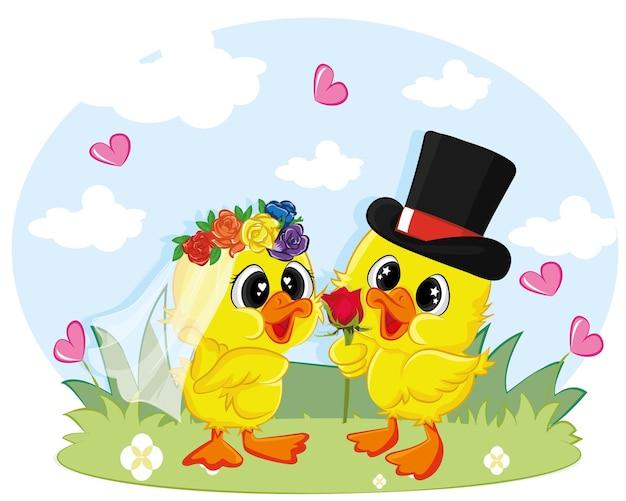 Mariage de canard entre deux canards entiers habillés.