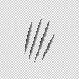 Marques de griffes d'une bête sur fond transparent. vecteur eps 10