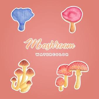 Mashroom aquarelle sticker